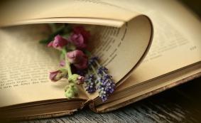 book-2363881_1920